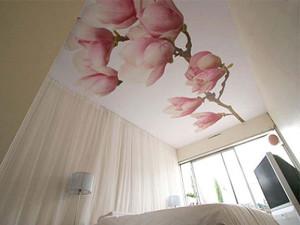 Сатиновый потолок с изображением (фото)