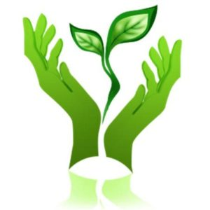 экологичность натяжного потолка