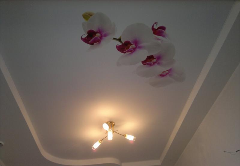 французские натяжные потолки